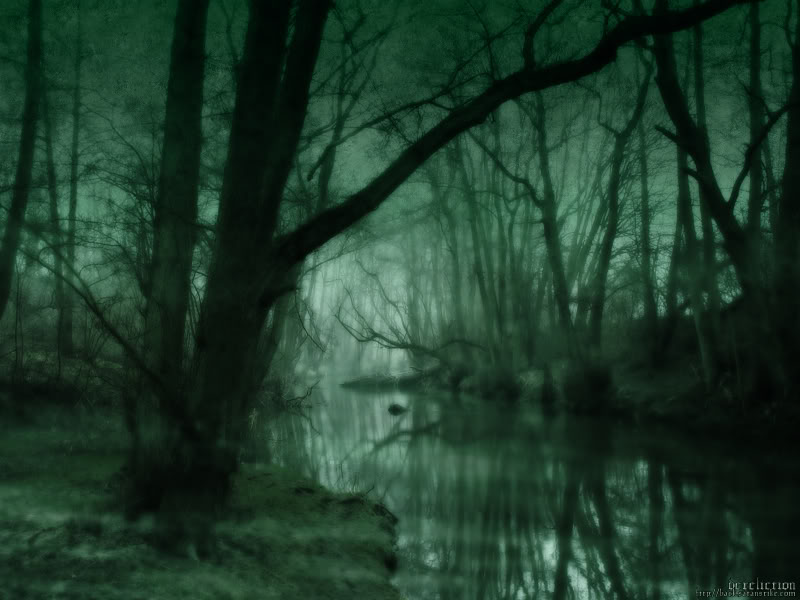 DarkGreenForest